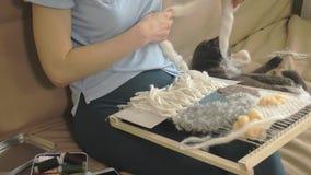Een vrouw weeft op een weefgetouw een mooi die borduurwerk van garen, in een huisstudio wordt gemaakt, dichtbij is de kat stock videobeelden