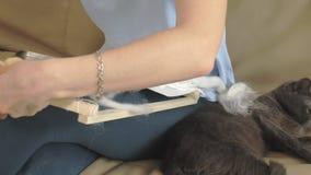 Een vrouw weeft op een weefgetouw een mooi die borduurwerk van garen, in een huisstudio wordt gemaakt, dichtbij is de kat stock footage