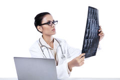Een vrouwelijke arts die röntgenstraal bekijken vloeit voort Stock Afbeeldingen