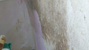 Een vrouwelijke hand smeert behanglijm op de muur met een speciale borstel om behang later te kleven stock videobeelden