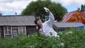 Een vrouwelijke laboratoriumtechnicus bestudeert de groei van aardappels op een experimentele plaats stock video