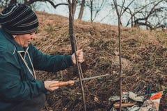 Een vrouwelijke tuinman snijdt indient de tuin in de tuin jonge, niet vruchtbare boom voor de inenting van vruchtbare fruitboom royalty-vrije stock foto's