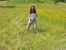 Een vrouwen maaiend en scything gras op het gebied dood Royalty-vrije Stock Foto's
