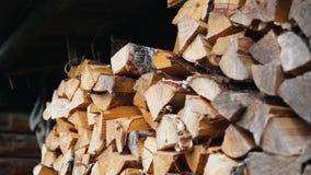 Een vrouwen` s hand neemt een berk droog afgebroken logboek van woodpile stock videobeelden
