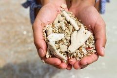 Een vrouwenhand houdt tweekleppige schelpdieren en koraal in het overzees Royalty-vrije Stock Foto