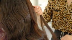 Een vrouwenkapper doet een omvangrijk kapsel aan een cliënt gebruikend een haar ironer, plooiend haar Professionele kapper stock video