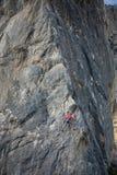 Een vrouwenklimmer op een rots Royalty-vrije Stock Foto's