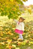 Een warme Zonnige dag in de Gouden herfst royalty-vrije stock afbeeldingen