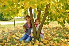 Een warme Zonnige dag in de Gouden herfst royalty-vrije stock foto's