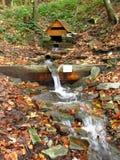 Een waterhole op de bergbeek Stock Afbeeldingen