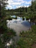 Een waterpond in de Zweedse bergen stock fotografie