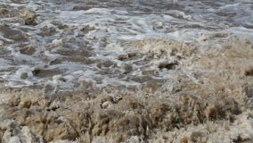 Een waterstroomversnelling op plattelandsvideo stock footage
