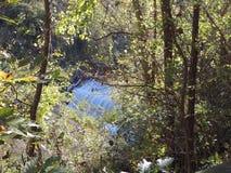 Een waterval Stock Foto's