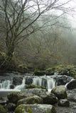 Een waterval en een rivier binnen in de ochtendmist royalty-vrije stock afbeelding