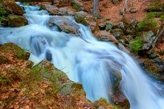 Een waterval in het bos stock foto's