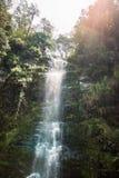 Een waterval in Paradijs Stock Afbeeldingen