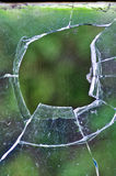 Een Web in een gebroken glas van vensters Stock Fotografie