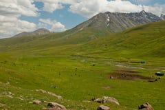 Een Weelderige Groene Vallei in Kyrgyzstan Stock Fotografie