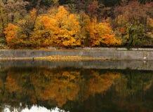 Een weerspiegeling van een visser en de herfst kleurde geel-bruin-groene bank van Pancherevo-Dam, Bulgarije royalty-vrije stock afbeelding