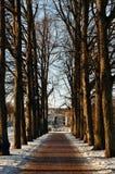 Een weg bij het park van Vigeland Stock Fotografie