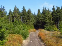 Een weg in de bergen Stock Afbeelding