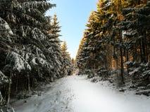 Een weg in de sneeuw Royalty-vrije Stock Afbeeldingen