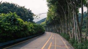 Een weg die leidt royalty-vrije stock fotografie