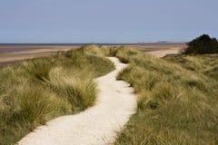 Een weg die over de zandduinen leidt Stock Foto