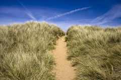 Een weg die over een zandduin leidt Stock Fotografie