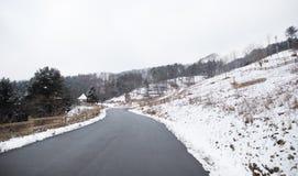 Een weg die tot een sneeuwbos leidt stock foto