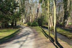 Een weg en een beek in een bos Royalty-vrije Stock Afbeelding