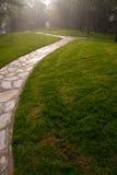 Een weg in Gras Stock Afbeeldingen