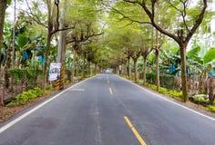 Een weg met boom wordt omringd die Royalty-vrije Stock Foto