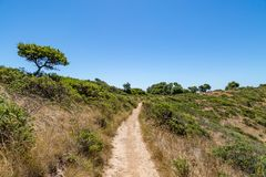 Een Weg op Angel Island stock afbeeldingen