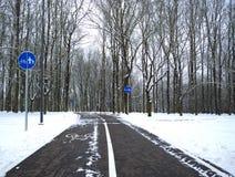 Een weg in een park in de winter Royalty-vrije Stock Foto's