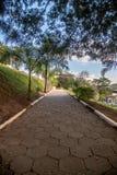 Een weg in een park op de middag stock fotografie