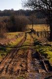 Een weg van landbouw Royalty-vrije Stock Fotografie