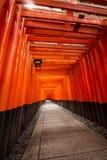 1000 Poorten Torii Stock Afbeeldingen