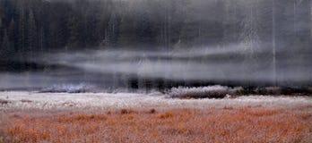 Een weide in Yosemite op een ijzige ochtend stock afbeelding