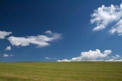 Een weidend land op een de zomerdag Stock Fotografie