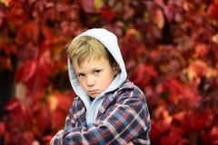 Een weinig verstoord Verstoorde jongen Weinig jongen voelt droevig op de herfstdag Ongelukkig weinig kind Wordt verstoord en tele royalty-vrije stock fotografie