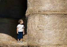 Een welk groot landbouwbedrijf! Stock Foto's