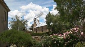 Een werkende windmolen bij oatlands met roze struiken in de voorgrond stock video