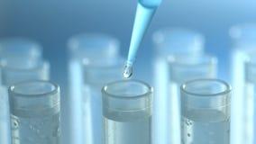 Een wetenschapper met een pipet analyseert een gekleurde vloeistof om DNA en de molecules in de reageerbuizen te halen stock videobeelden