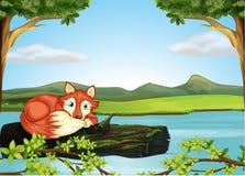 Een wild dier in de rivier vector illustratie