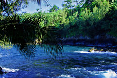 Een wilde rivier Royalty-vrije Stock Afbeelding