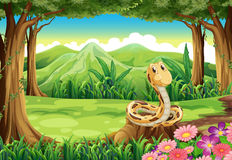 Een wildernis met een slang boven de stomp stock illustratie