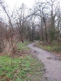 Een windende tuinweg in Parc Bloemende Parijs, Parijs royalty-vrije stock afbeeldingen