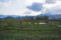 Een windmolen in huangshan ten westen van huangshan, anhuiprovincie Royalty-vrije Stock Afbeelding