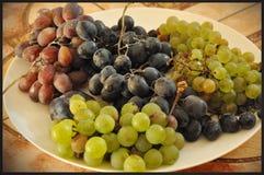 Een witte plaat met verschillende druivenverscheidenheden stock fotografie
